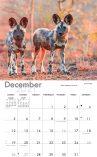 A4 calendars 2021_Back.indd