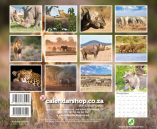 A4_Wildlife Big5 2019 Back Cover