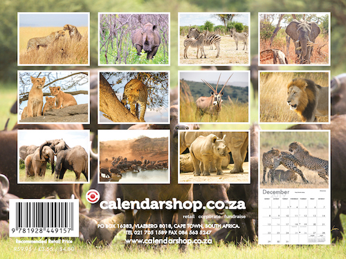 African Wildlife A6 Wall Calendar 2019 Calendar Shop