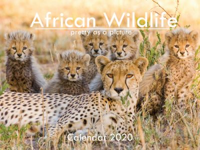 A6_African Wildlife 2020 Front