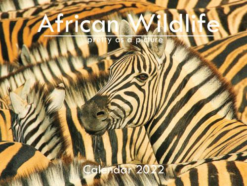 African Wildlife A6 Wall Calendar 2022