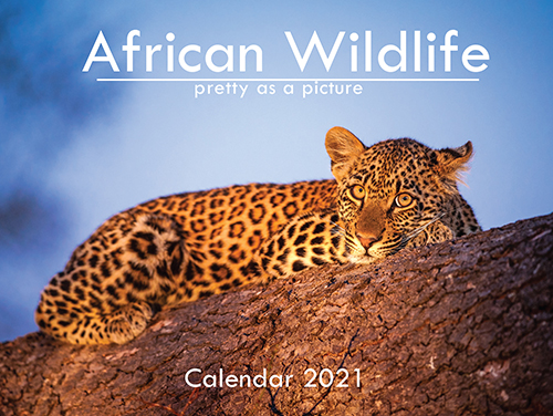 A6_African Wildlife 2021_.indd