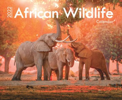 AA42022_Africa-Wildlife_Front-Cover