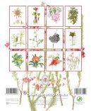 A42019_Botanical Art2