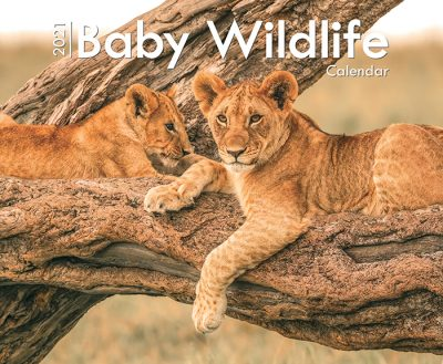 A42021_Baby Wildlife_.indd