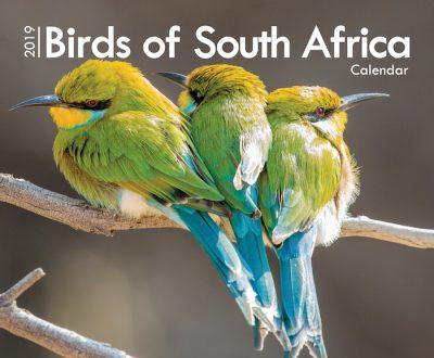 A4_Birds 2019 Cover