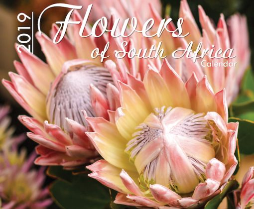 A4_Flowers of SA 2019 Cover