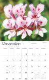 A4 calendars 2020 back.indd