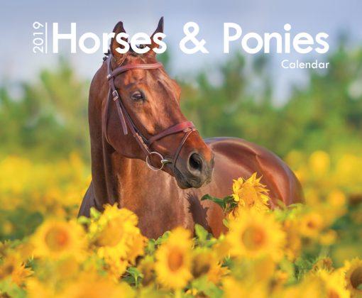 A4_Horses 2019 Cover