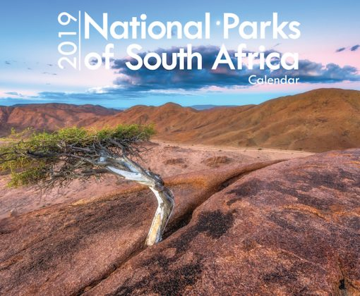 A4_National Parks 2019 Cover