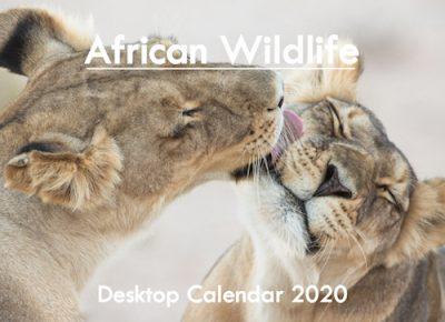 A5_DESKTOP African 2020 Front