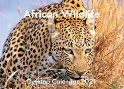 A5_DESKTOP African 2021_.indd