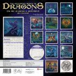 dragons back