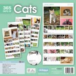 Cats 365 back