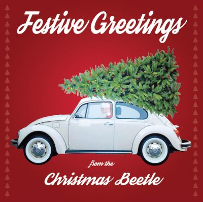 Christmas Beetle - Christmas Card