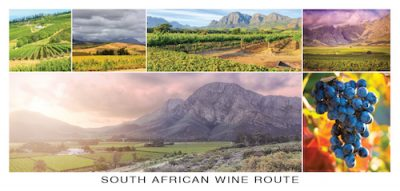 South African Wine Postcard