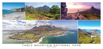 Table Mountain.indd